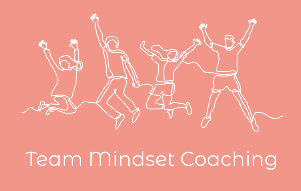 Team Mindset Coaching